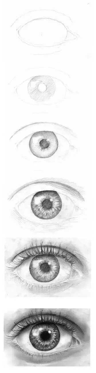 服装设计网 教程 时装画/手绘技巧    眼球形成一个椭圆形    眼球与