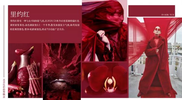 Fashion 2020/21秋冬北美市场必备五大色彩(图3)