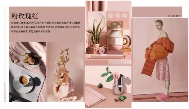 Fashion 2020/21秋冬北美市场必备五大色彩(图17)
