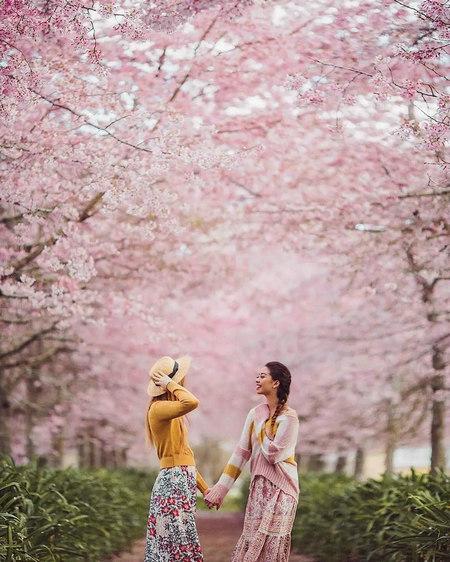 春游赏花穿什么?这3个颜色拍照巨好看!(图2)