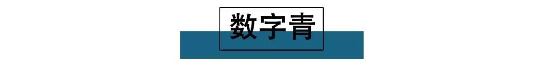2020/21秋冬色彩趋势 最新5大流行色赶快穿起来(图2)