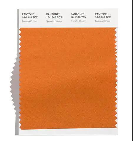 色彩趋势 Pantone发布2021秋冬伦敦时装周10大流行色(图3)