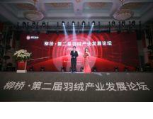 柳桥•第二届羽绒产业发展论坛在平湖成功召开