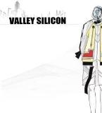valley silicon