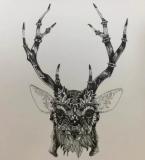 鹿,黑白手绘图案