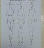 服装设计人体模特线稿